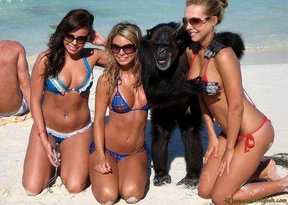 Top 14 Fun Funny Beach Photos