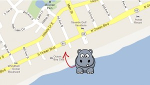 Hippo's Location on the Map