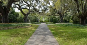 Brookgreen Gardens Attraction