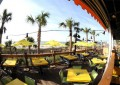 Landshark Bar Myrtle Beach