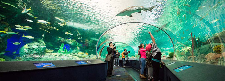 3 Places To Spend A Rainy Or Cold Day With Kids In Myrtle Beach